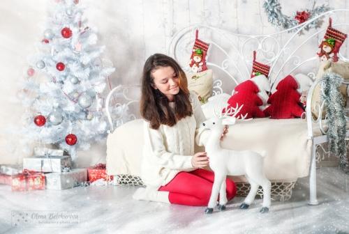 22 Новорічний - Оидн из самых радостных периодов - праздничные и новогодние фотосессии