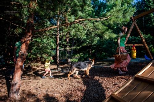 8 ГАЛЕРЕЯ - Сімейна - Сімейні фотосессії - сімейні радощі Семейная фотосессия - радостная фотосессия