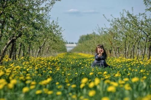 12 Есения - Шестая весна